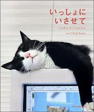 いっしょにいさせて -ネコの写真集-