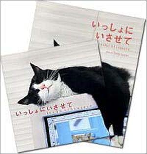 『いっしょにいさせて』CD&書籍セット
