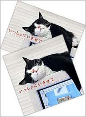 『いっしょにいさせて』CD&ポストカードセット